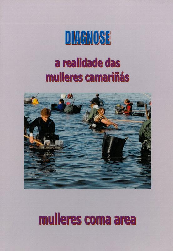Diagnose: a realidade das mulleres de Camariñas (2003)